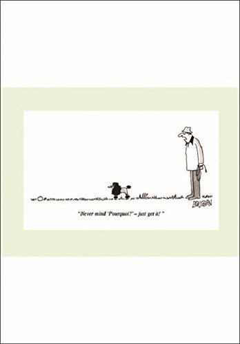 Punch Humorous Blank Greeting Card (WDM0285) - Poodle & Ball Woodmansterne