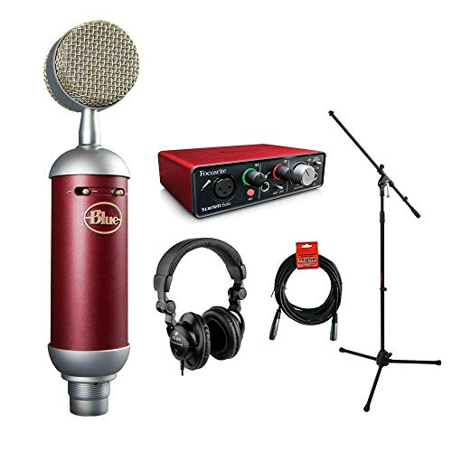 (Blue Spark SL Large-Diaphragm Studio Condenser Microphone with Focusrite Scarlett Solo Audio Interface, HPC-A30 Monitor Headphone, Mic Stand, XLR-XLR Cable Bundle)