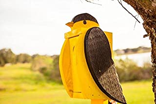 product image for DutchCrafters Hanging Bird Feeder (Goldfinch)