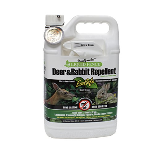 Liquid Fence 109 Ready-to-Use Deer and Rabbit Repellent 1 (Liquid Fence Rabbit)