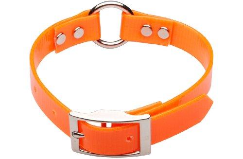 Premier Nite Lite Day-Glo Collar in Blaze Orange, Ring in Center, 1″ x 25″, My Pet Supplies