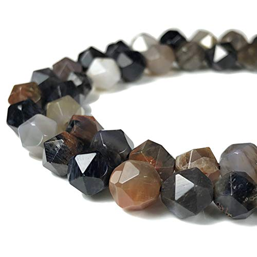 [ABCgems] Arizona Petrified Wood Agate 8mm Precision-Star-Cut Beads for Beading & Jewelry Making