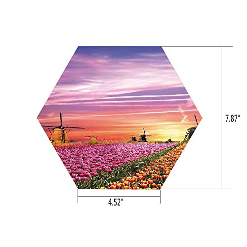 Mario Mill Orange - iPrint Hexagon Wall Sticker,Mural Decal,Nature,Tulip Fields and Windmills in European Landscape with a Sunset Sky View,Orange Pink Purple,for Home Decor 4.52x7.87 10 Pcs/Set