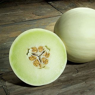 (50 Seeds Honeydew Green Flesh Melon Seeds, NON-GMO)