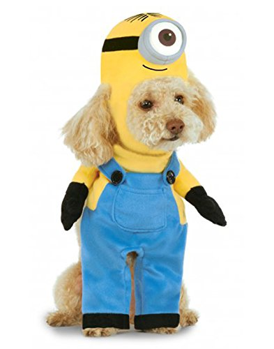 Minion Stuart Arms Pet Suit, (Family Bargains Halloween Costumes)