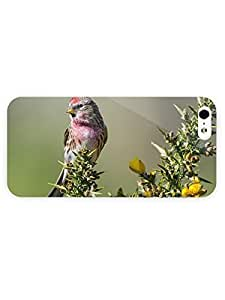 3d Full Wrap Case for iPhone 5/5s Animal Cute Little Bird
