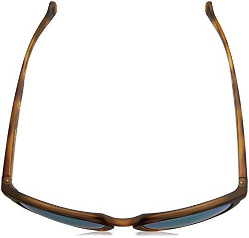 Arnette Sonnenbrille GROOVE AN4203 Fuzzy Havana 21523R -  allstatepaintingcontractor.com 39ab09de5ce4