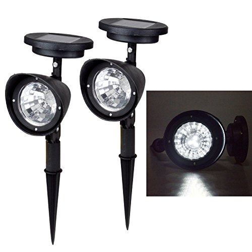 Outdoor Lighting By Landscape Design First in Florida - 3