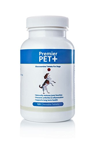Glucosamine For Dogs With Chondroitin, Green Lipped Mussel, MSM, Hyaluronic Acid & Vitamin C, 120 Chewable Tablets For Arthritis, Joint Pain Relief & Healthy Joint (Glucosamine Chondroitin Msn Tablets)