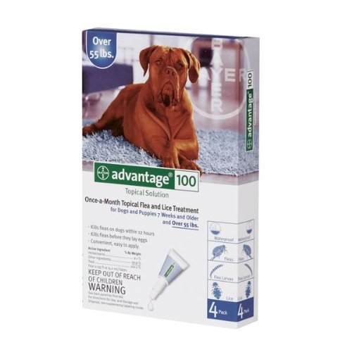 Bayer Topical Flea Treatment for Dogs over 55 Lbs (4 Applications), My Pet Supplies