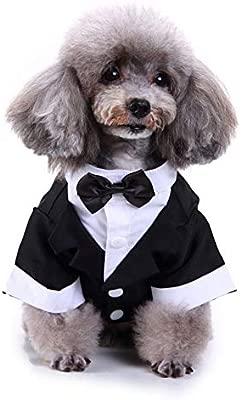Camisa del Perro del Perrito del Animal Doméstico Ropa para ...
