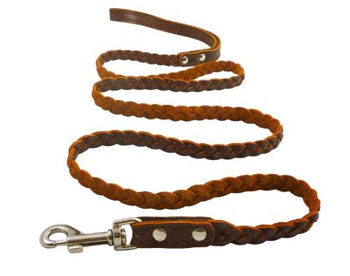Braided Leather Leash (Genuine Fully Braided Leather Dog Leash 4 Ft Long 1/2