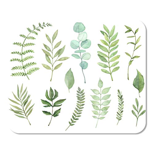 (Suike Mousepad Computer Notepad Office Watercolor Botanical Clipart of Green Leaves Herbs and Branches Home School Game Player Computer Worker 9.5x7.9 Inch)