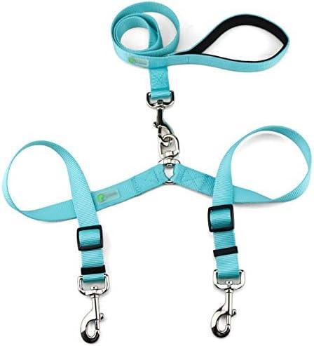 DCbark Tangle Adjustable Comfortable Turquoise