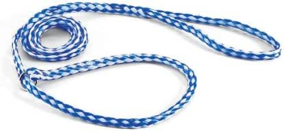 Downtown Pet Supply Kennel Slip Lead - Braided Polyethylene - Light Blue