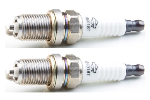 Briggs & Stratton 496018-2pk Spark Plug (2 Pack) For OHV Engines Replaces 5066K, ()