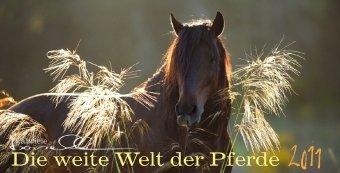 Panorama Pferd - Die weite Welt der Pferde 2011