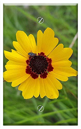 Single-Gang Blank Wall Plate Cover - Flower Yellow Flower Tickseed Plains Tickseed