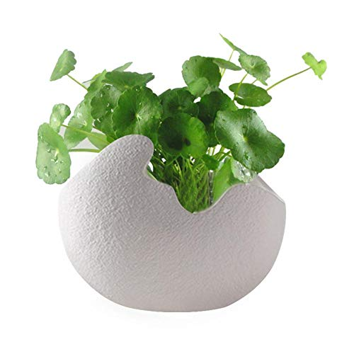 Lamptti Flower Vase White Eggshell Shape Hydroponic Plant Vase Flower Pot-Modern Simple Ceramic Decoration for Art of Flower Arranging Soil Cultivating Plant Flowerpot for Home Decoration