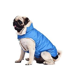 Amazon.com : Kuoser Cotton Thickened Fleece Lining Dog