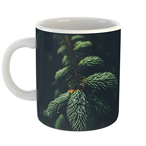 Westlake Art - Wallpaper Christmas - 11oz Coffee Cup Mug - Modern Picture Photography Artwork Home Office Birthday Gift - 11 Ounce (9CA3-3F31A) -