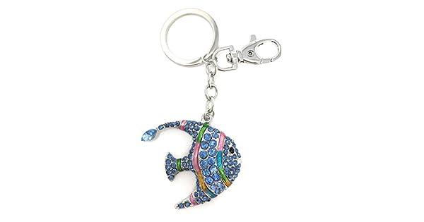 Amazon.com: Esmaltado y pedrería Rainbow peces tropicales ...