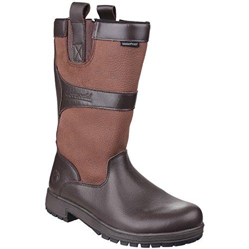 Wellington Ladies Boots Womens Waterproof On Pull Cotswold Ascot Walnut 7POT6W