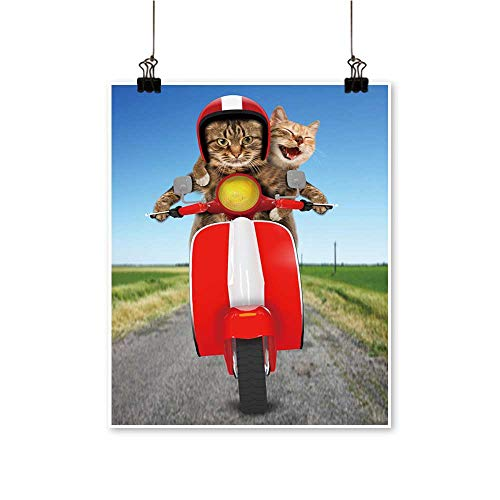 Canvas Print Wall Art Two Cats are driv a mope Humorous Theme Canvas Texture Decoration,12