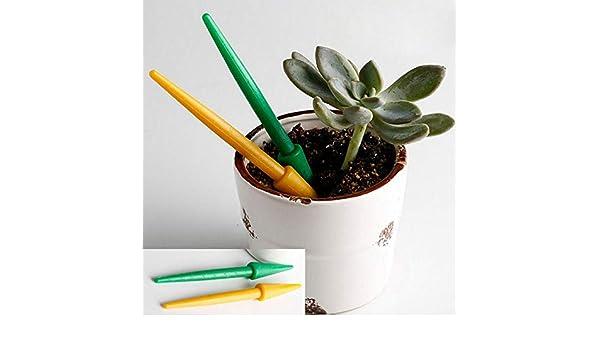 6Pcs//Set Mini Gardening Tool Succulent Plant Transplant Growing Kit Home Garden