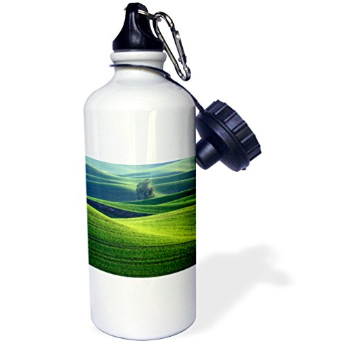 Palouse Hills - Danita Delimont - Agriculture - Washington, Steptoe Butte. Scenic of rolling green Palouse hills. - 21 oz Sports Water Bottle (wb_231671_1)