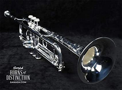 Amazon.com: Bach Mariachi Stradivarius Trompeta lr190s43b ...