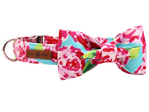 Lionet Paws Dog Collar with Bowtie, Durable Adjustable and Comfortable Cotton Collar for X-Small Dogs and Cats, Neck 8-12in