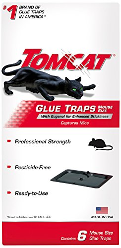 Tomcat Glue Traps Mouse Size with Eugenol for Enhanced Stickiness (Best Mouse And Rat Traps)