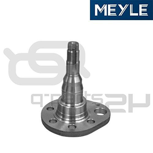 (Meyle 100 501 0036 Stub Axle, wheel)