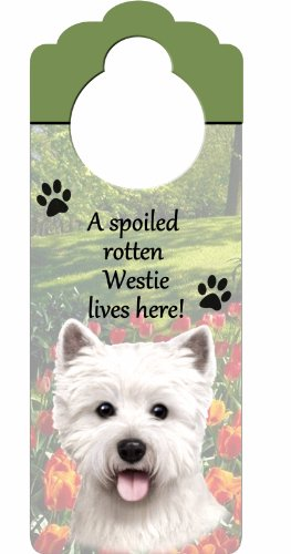 "Westie Wood Sign ""A Spoiled Rotten Westie Lives Here""with Artistic Photograph Measuring 10 by 4 Inches Can Be Hung On Doorknobs Or Anywhere In Home"