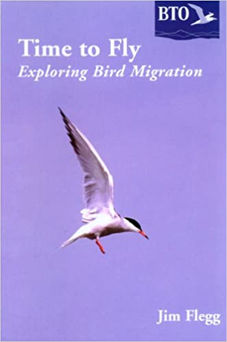 Time to Fly: Exploring Bird Migration