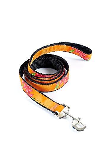 Maui Dog Wear Leashes (1