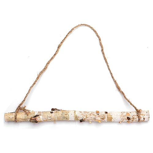 Byher 15-Inch White Birch Logs for Decoration
