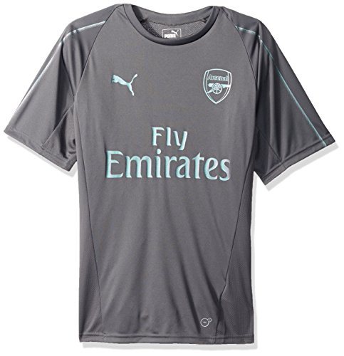 (PUMA Men's Arsenal FC Training Jersey SS, Iron gate L)