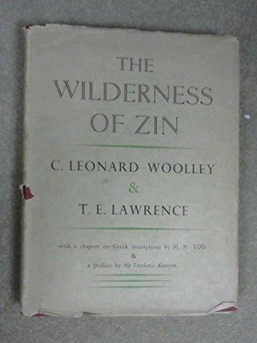 The wilderness of Zin ebook