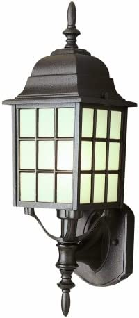 Trans Globe Lighting Trans Globe Imports 4420 RT Traditional One Light Wall Lantern from San Gabriel Collection in Bronze Dark Finish, 19-1 2-Inch, Rust
