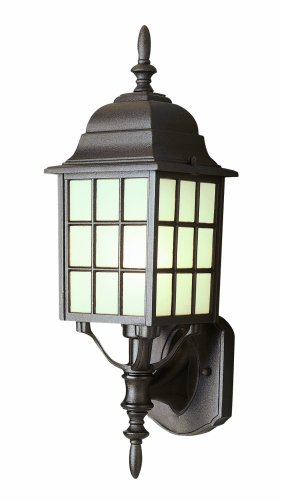 Trans Globe Lighting 4420 BK Outdoor San Gabriel 19.5