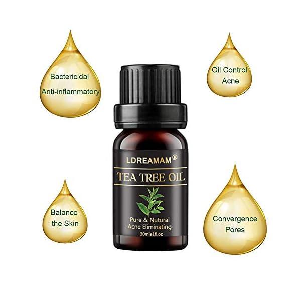 Olio di Albero del Tè,Tea Tree Essential Oil,Olio Di Tea Tree,Oli Essenziali,Allevia irritazioni cutanee comuni, pelle…
