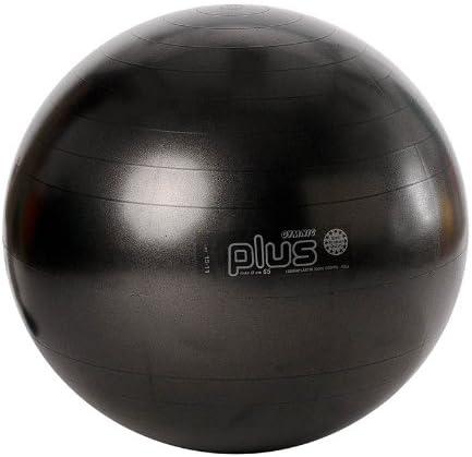 Sport-Tec - Pelota de gimnasia (65 cm), color negro: Amazon.es: Jardín