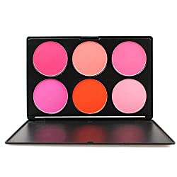 FantasyDay Pro 6 Colours Large Powder Blush / Blusher Makeup Palette Contouring Kit - Ideal for Professional and Daily Use