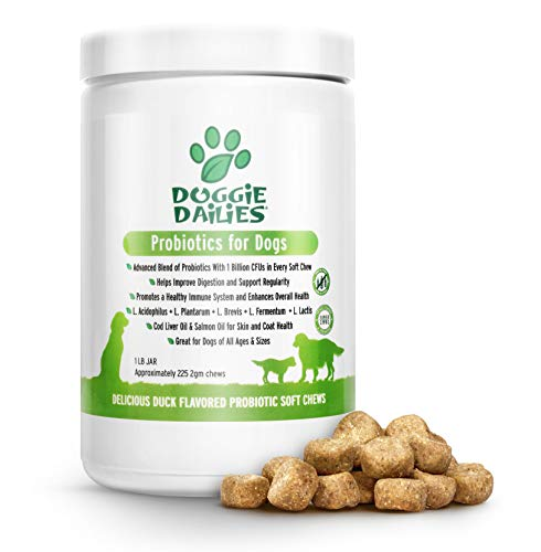 Doggie Dailies Probiotics for Dogs, 225 Soft Chews, Advanced Dog Probiotics with Prebiotics, Promotes Digestive Health…