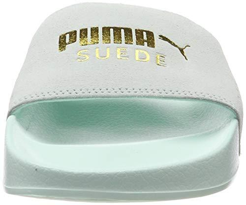 Aqua Piscina Puma Da Scarpe Adulto Suede – E puma Spiaggia Leadcat Unisex Blu fair Gold Team YwqY7