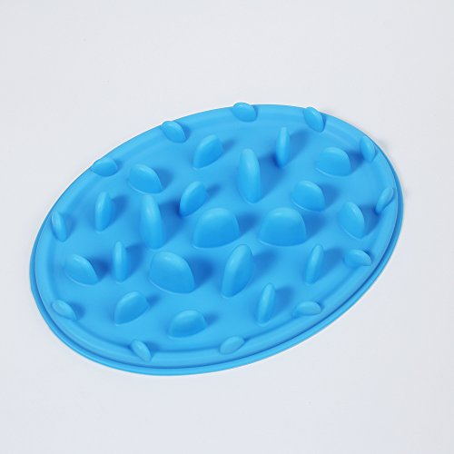 Pet Slow Feed Bloat Non Slip Feeder Bowl Easy Training Eating For Dog Puppy Cat Blue Color