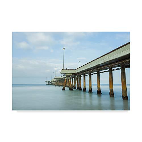 - Trademark Fine Art Venice Cool by Chris Moyer, 22x32-Inch Fine Art Multicolor