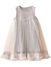 Embroidery Party Princess Dress Cute Vestidos children Clothes Outfits